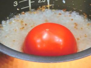 ココナツオイルのガーリックトマトライス