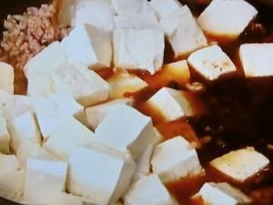 豆チ入りマーボー豆腐